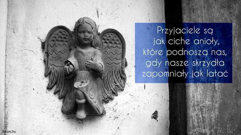 angel Z cyklu   Zamyślenia...