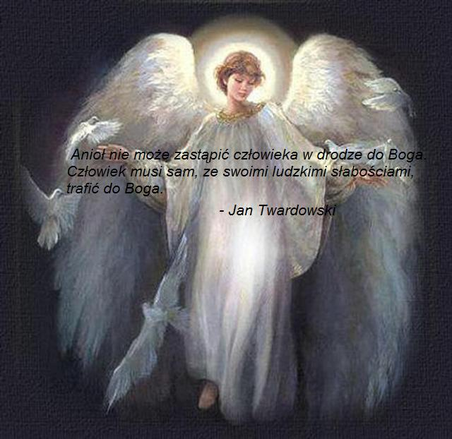 Anioł nie może...