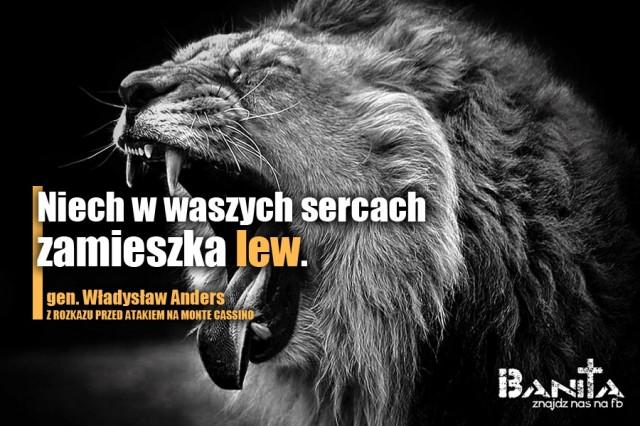 SERCE-LWA_Banita