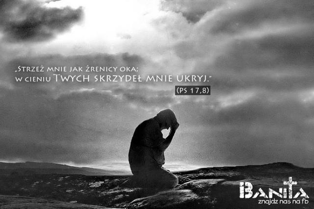 UKRYJ_banita