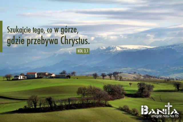 W_GROZE_banita