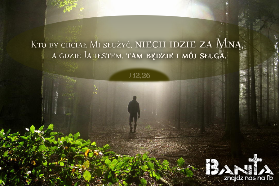 Z-NIM_banita