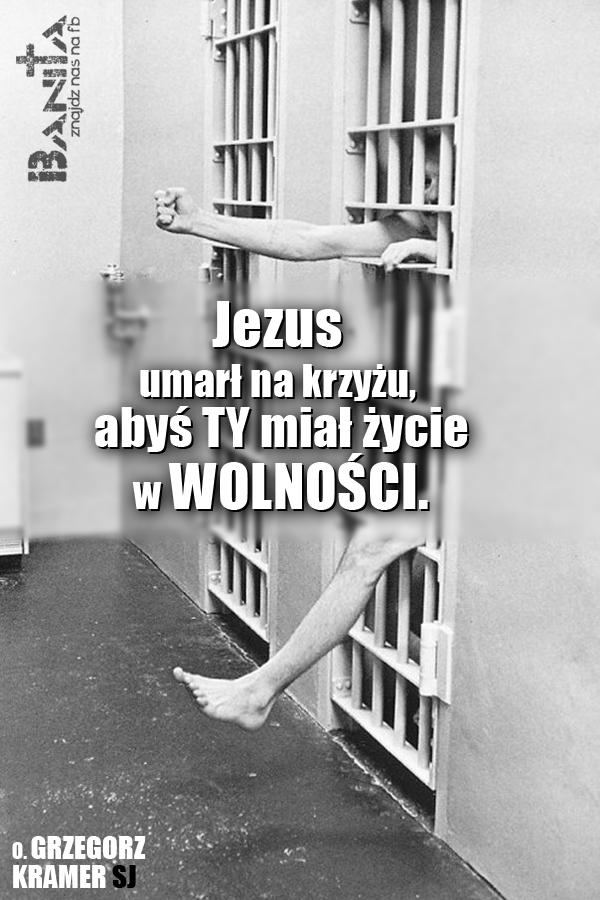 ZYCIE-W-WOLNOSCI_banita